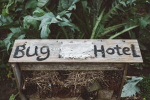 outdoor learning bug hotel sign